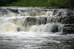 Ocqueoc State Park